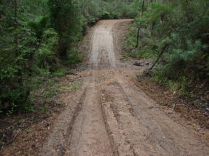 BC road